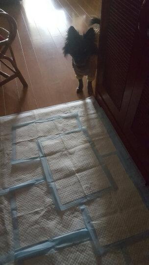 宠百思(PETBEST)狗尿垫狗尿片加厚狗尿布尿垫尿不湿 S号:33*45cm 晒单图