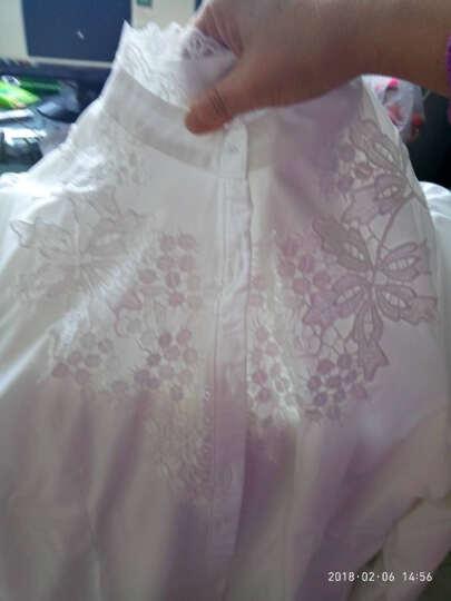 诱朵 雪纺衫女长袖2019春秋冬保暖女装立领蕾丝打底衬衫 上衣不加绒+裤子套装 XL 晒单图