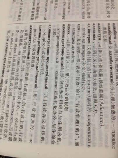 大俄汉词典(修订版) 晒单图