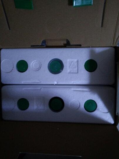 昂立 1号口服液 益生菌饮品(改善菌群失调 抗氧化 调节血脂) 500ml*6瓶装 1箱 晒单图