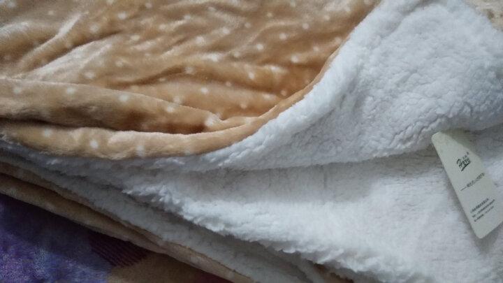 合雨珊瑚绒小毛毯秋冬季双层加厚保暖法兰绒膝盖毯仿羊羔绒办公室午睡毯子空调毯上网毯电视毯学生毯儿童毯 驼色圆点 100*150cm 晒单图