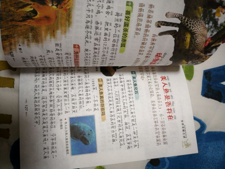 小书虫阅读系列·小学生语文新课标必读丛书:世界未解之谜(彩图注音版) 晒单图