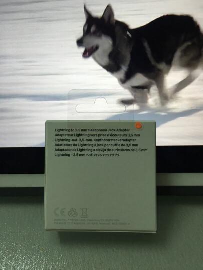Apple Lightning 至 3.5 毫米耳机插孔转换器 晒单图