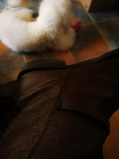 塔拉戈 进口Tarrago真皮保养油 补色鞋油 皮鞋补色皮鞋油 无色黑色皮衣油 上色 00无色透明 晒单图