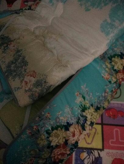 九洲鹿家纺 榻榻米可折叠学生加厚防滑印花床垫双人床褥垫子 蓝贵人-1.5x2m 晒单图
