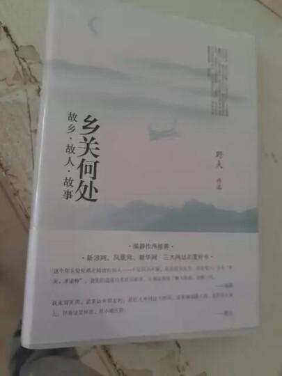 乡关何处(故乡故人故事)(精)  野夫经典之作,新版收录柴静作序! 晒单图