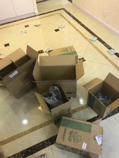 绿驰 甲醛苯系物检测盒 2盒甲醛+2盒苯检测套装 测甲醛试纸仪器 自测甲醛检测仪家用(限量) 晒单图