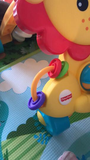 费雪(Fisher Price) 多功能早教启智玩具 声光狮子手推车学步车Y9854 晒单图