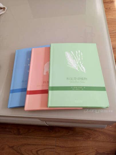 科瓦奇讲植物、动物、天文与地理(全三册)自然科学 儿童哲学智慧书籍 晒单图