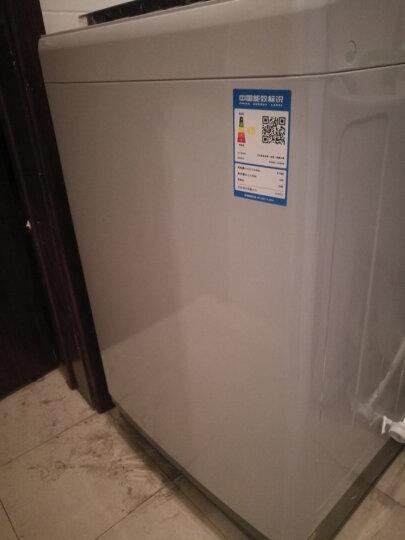 TCL 8公斤 波轮 洗衣机全自动 金属机身 四重智控(宝石黑) XQB80-J100 晒单图