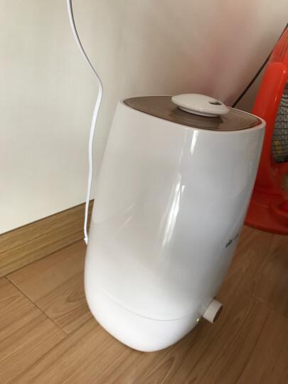 小熊(Bear)加湿器 5L大容量 静音卧室办公室空气增湿 家用迷你香薰加湿JSQ-A50U1  晒单图