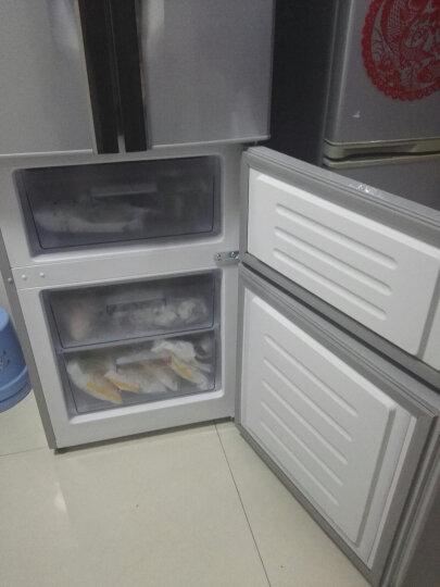 康佳(KONKA) BCD-288GY4S 288升法式多门电冰箱 保鲜节能 家用 银色 晒单图