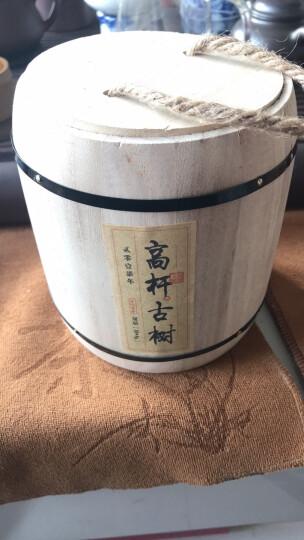 2017易武高杆古树小龙珠普洱茶 纯料明前春茶 卖克茶叶 云南西双版纳易武雨林乔木茶 晒单图