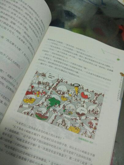 大猫老师的绘本作文课:一年级 晒单图