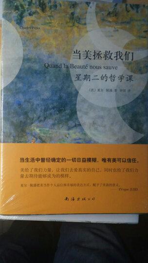 中国传统绘画史纲:画脉文心两征录 晒单图