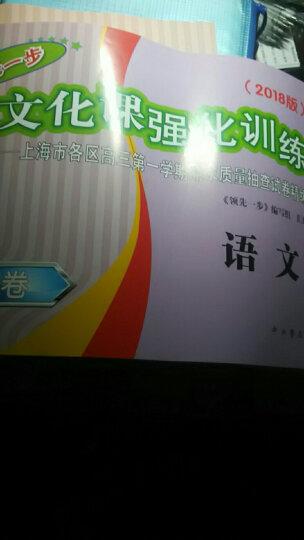 2019领先一步文化课强化训练高三语文试卷一模卷语文高三高3上海高考中西书局 晒单图