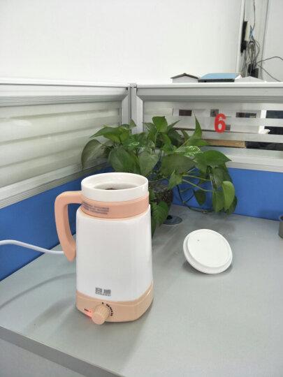 容威(rongwei) 养生杯600ML电炖杯电热杯大容量陶瓷分体内胆热奶煮粥炖汤保温煮茶迷你养生壶 浅卡其色 晒单图