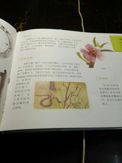 正版 这就是二十四节气 春夏秋冬四卷 套装4册 儿童畅销书籍 晒单图