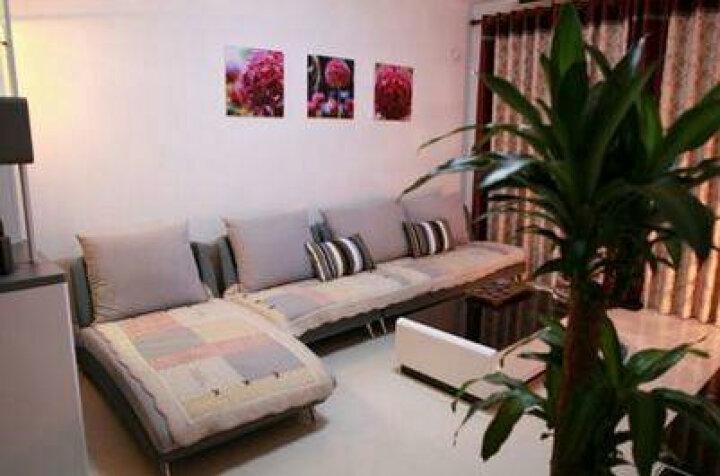 木笛 布艺沙发懒人沙发北欧现代小户型沙发 客厅家具 布艺单双人沙发 粉红色 二人位+贵妃位 晒单图