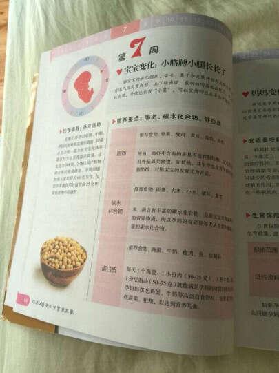 怀孕40周同步营养三餐 新书 孕产育儿书 孕妇饮食宜忌 营养餐 健康食谱 晒单图