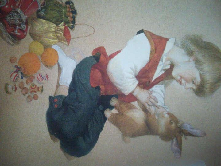 爱的魔法图画书·爱让生命变得真实:绒布小兔子 晒单图