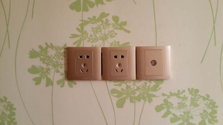 罗格朗开关插座面板 美涵雅白五孔带双USB插座充电插座 晒单图