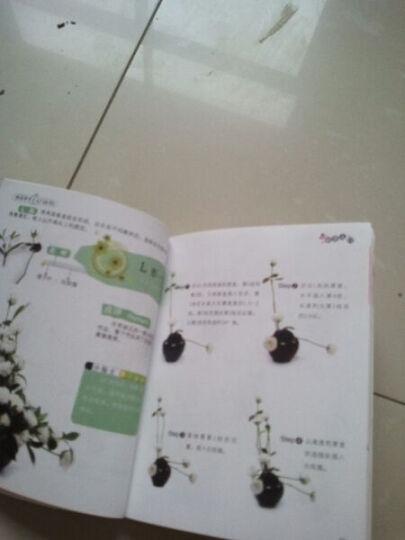 快乐学手工入门丛书(第2辑):插花入门 晒单图