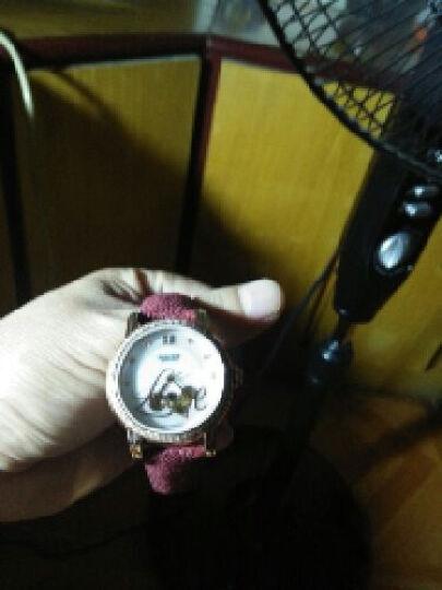宝时捷(POSCER)女士手表时尚女表镶钻镂空表盘全自动机械手表真皮红表带6079L 6079L.RHW白盘褐色带 晒单图