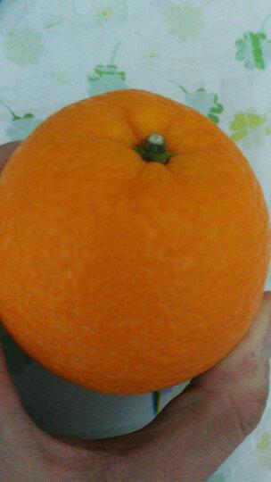 鲜味天成 江西赣南脐橙 橙子 80-90mm 20斤装 晒单图