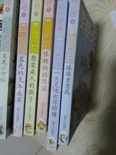 单本链接笑猫日记系列1-25 又见小可怜 樱花巷的秘密 属猫的人等儿童文学课外书读物杨红樱作品 14.《小白的选择》 晒单图