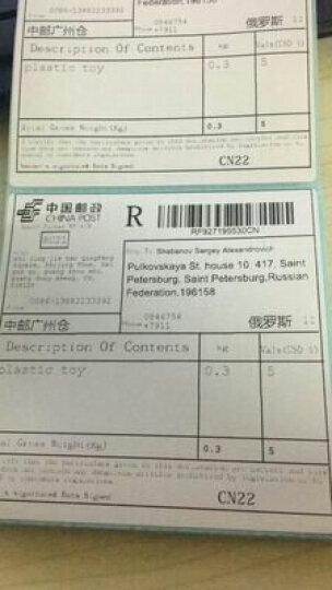 斑马(ZEBRA) GK888t条码打印机二维码热敏不干胶标签 快递单电子面单打印机 标配+网口 晒单图