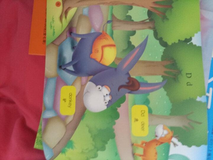 阳光幼教幼儿早期教育主题活动课程1-3-6岁儿童读物幼儿园中班上册教材学前宝宝教辅书籍 晒单图