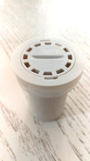 日本地漏芯内芯卫生间管道洗衣机排水地漏盖防臭地漏芯 晒单图