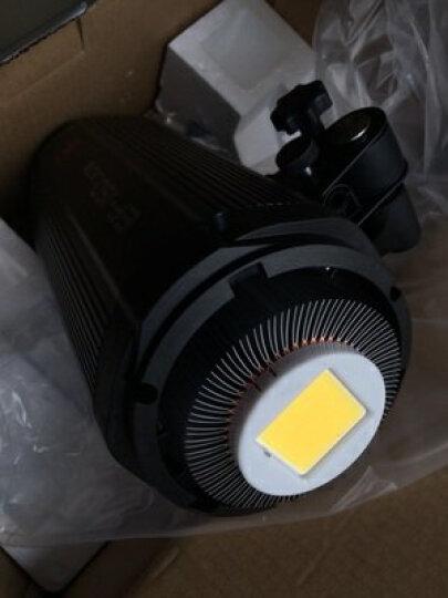 金贝EF-60 100 150 200LED专业摄影常亮灯太阳灯直播视频摄像补光灯人像儿童拍摄柔光灯 EF-150D锂电池LED灯 晒单图