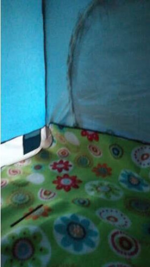 威迪瑞 帐篷户外 手抛全自动3-4人帐篷防雨 双人速开春游帐篷套餐 套餐二(3-4人绿色+铝箔防潮垫) 晒单图