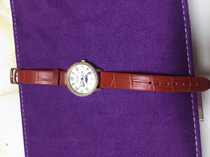 欧雷亚(OLEIR) 女士手表不锈钢石英女表L6820 防水高端女款水钻皮带手表 玫瑰金钻面红表带 晒单图
