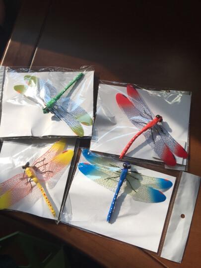度慕仿真蝴蝶蜻蜓玻璃装饰贴纸衣柜自粘窗帘电视柜沙发背景墙贴画墙贴 蜻蜓蝴蝶混合装磁铁12只 中 晒单图