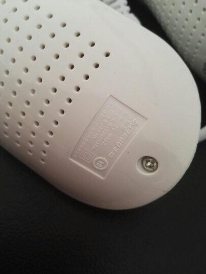 志高(CHIGO) 烘鞋器ZG-HX5家用干暖鞋器加热可伸缩烤鞋器除臭杀菌成人鞋子烘干器 紫光款+定时延长线 晒单图
