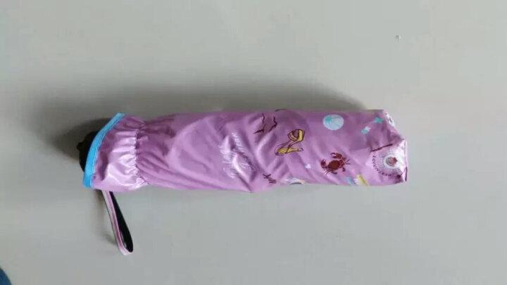 天堂伞 三折黑漆钢骨彩胶防紫外线UPF50+遮阳伞 韩式公主太阳伞时尚女士配饰 橙红色C 晒单图