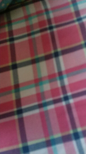 梦雅莉客厅茶几地毯短绒毛浴室厨房防滑纯色珊瑚绒卧室满铺 玫红色 200CM*300CM 晒单图