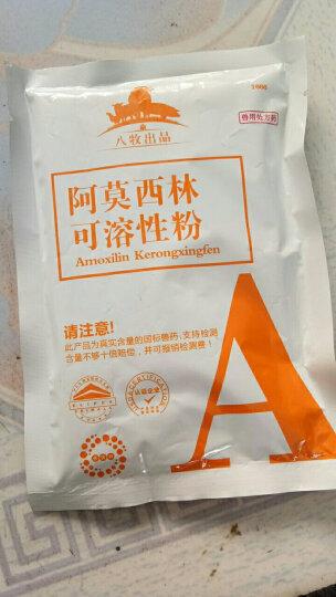 派克斯 兽药10%阿莫西林可溶性粉 兽用猪药鸡药鸭鹅禽药水产猪用兽用消炎药 10%阿莫西林可溶性粉100g 晒单图