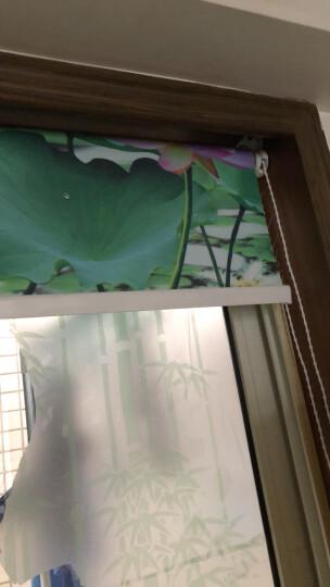 伊姿兰黛遮光卷帘清新山水风景画客厅厨房卫生间卷帘 定制窗帘 自助餐 1平米(单幅2个平方起拍) 晒单图