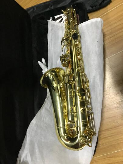 亨韵(Henlucky) 亨韵乐器 降E调中音萨克斯风管WAS-8068 乐队初学娱乐 晒单图