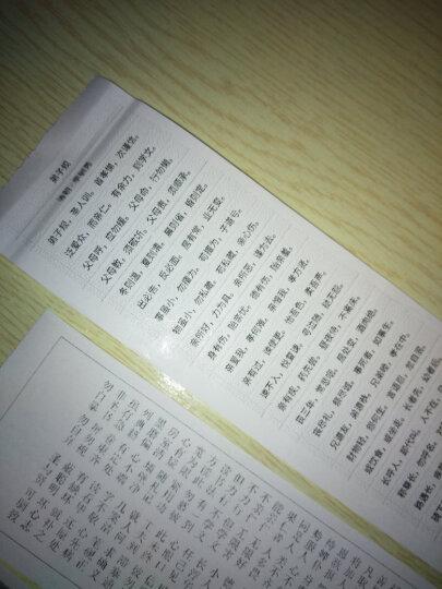 PAPERANG喵喵机蓝牙手机照片口袋迷你不干胶标签便口袋热敏打印机 绿色 晒单图