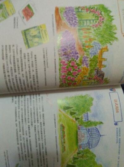 水溶性色铅笔的花园写生 晒单图