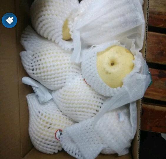 河北皇冠梨 10-12个 净重约3kg 单果250-300g 新鲜水果 晒单图