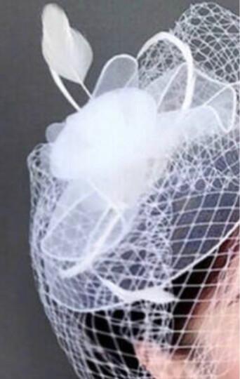 玛诗提娜  新娘头饰复古面纱饰品网纱羽毛花朵小礼帽发夹发饰黑白色 紫 色 晒单图