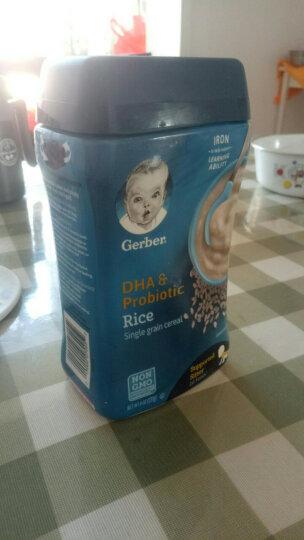 嘉宝(GERBER)美国进口米粉 宝宝零食婴儿辅食 米糊 DHA原装进口婴儿米粉 苹果甜番薯(混合谷物)6个月+ 晒单图