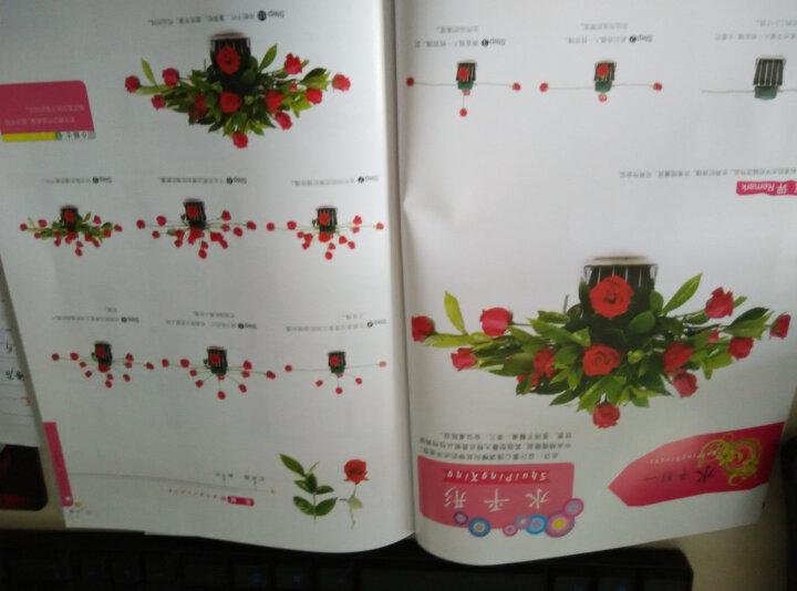 实用插花教程系列丛书:插花入门 晒单图