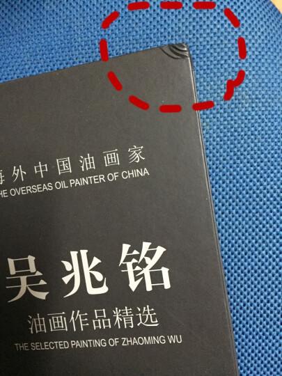 海外中国油画家:吴兆铭油画作品精选 晒单图